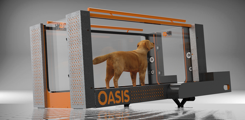 Underwater Treadmill for Canine Rehabilitation