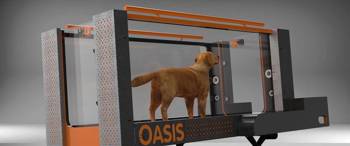 Oasis Pro Underwater Treadmill for Canine