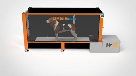 Oasis-ECO